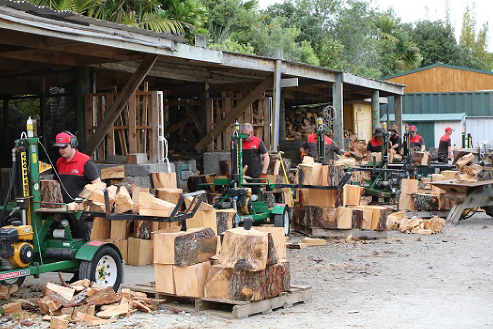Chipping in for Charity: Making Log-Splitting Day a Success