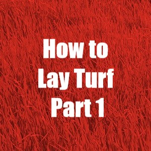 How to lay turf part 1 from Kennards Hire NZ